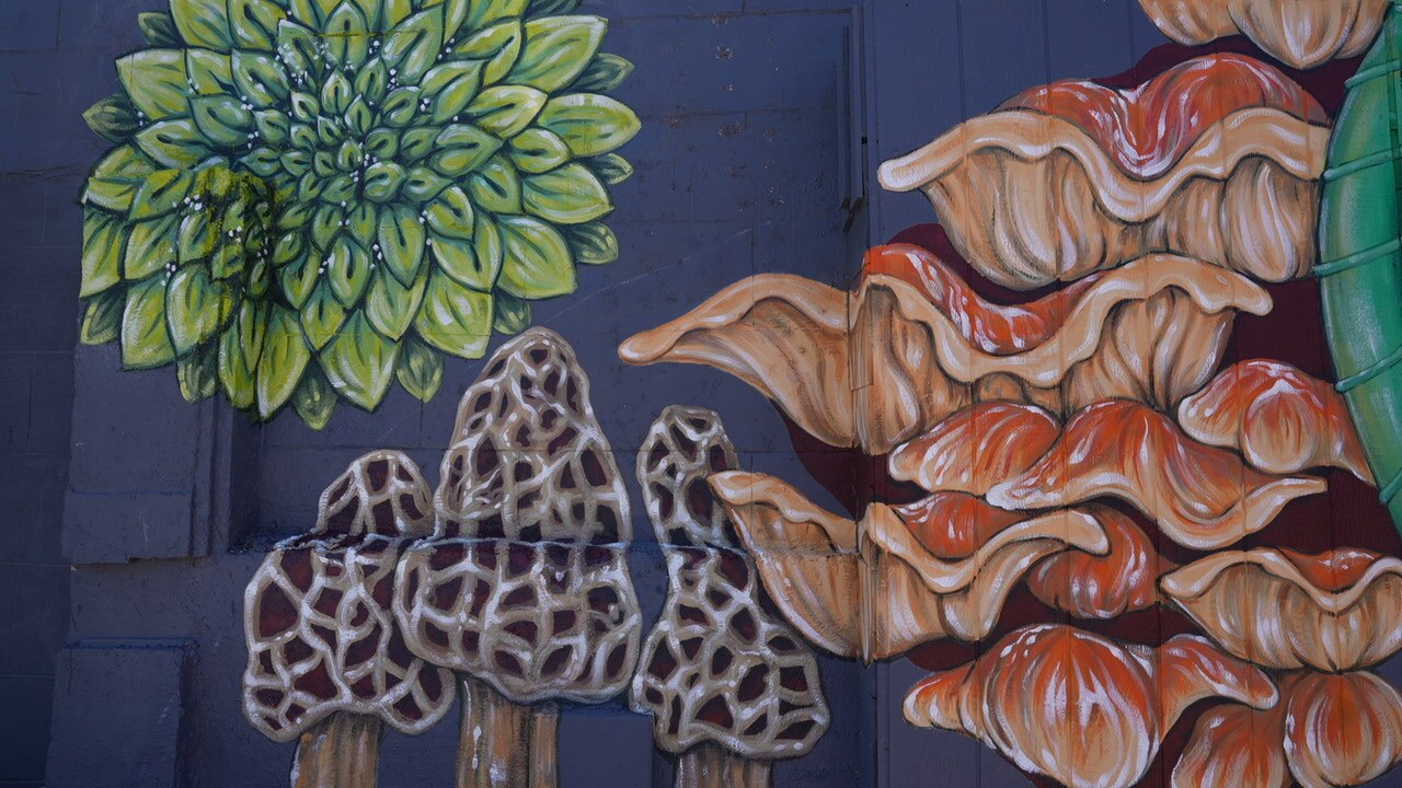 Mural on the Studio Shop, too