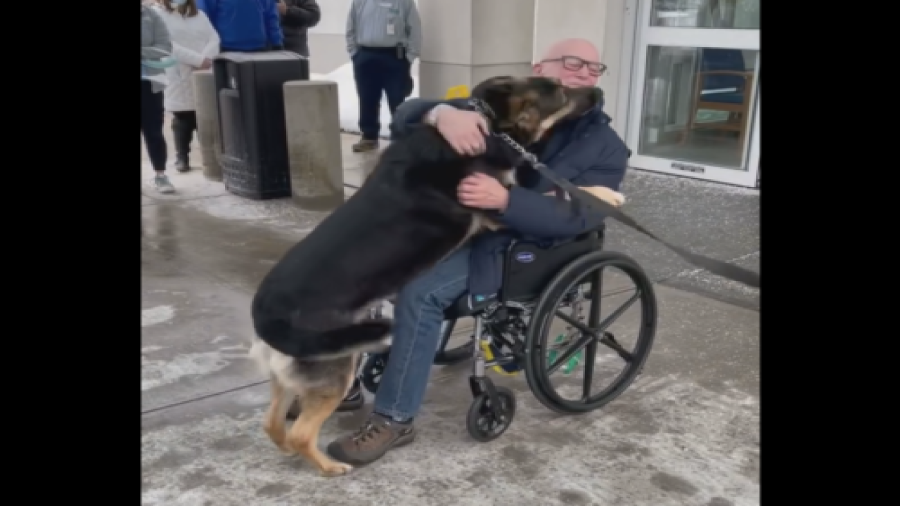 Man Reunited With Rescue Dog That Saved His Life