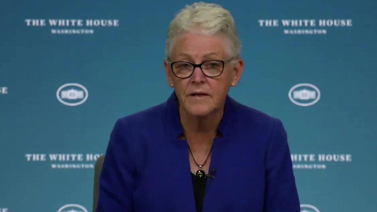 Gina McCarthy, White House National Climate Adviser