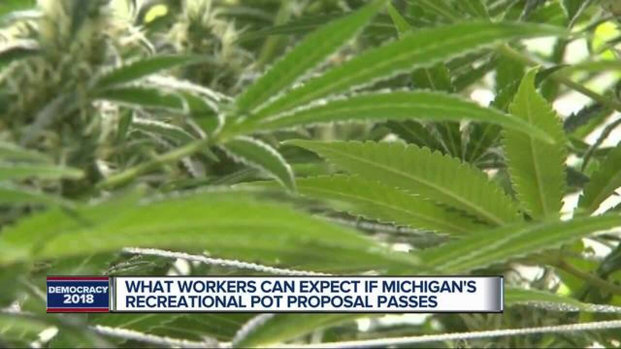What workers can expect if pot is legalized