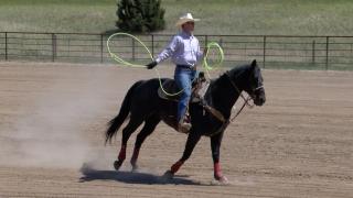 Montana State's Jaret Whitman
