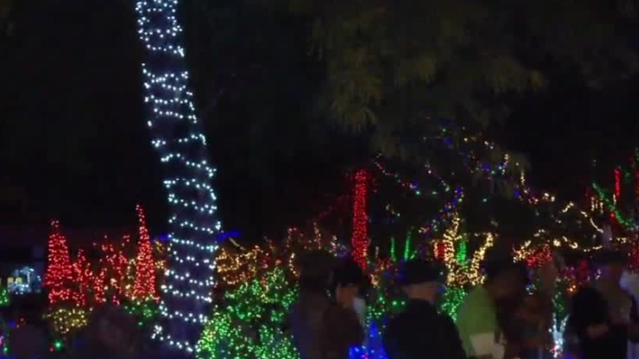 Ethel M's Cactus Garden Lighting on Nov. 6