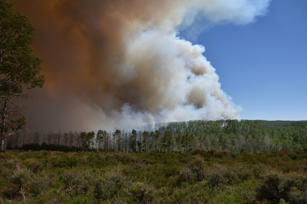 Bennion Creek Fire