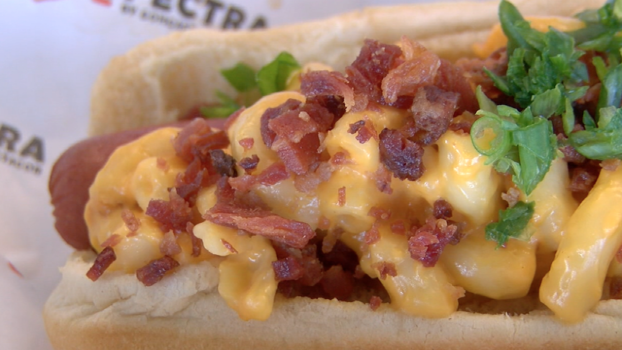 BACON MAC N CHEESE DOG at Cubs Spring Training!