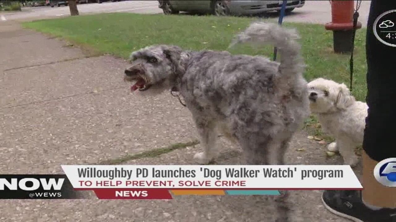 'Dog Walker Watch' program created in Willoughby