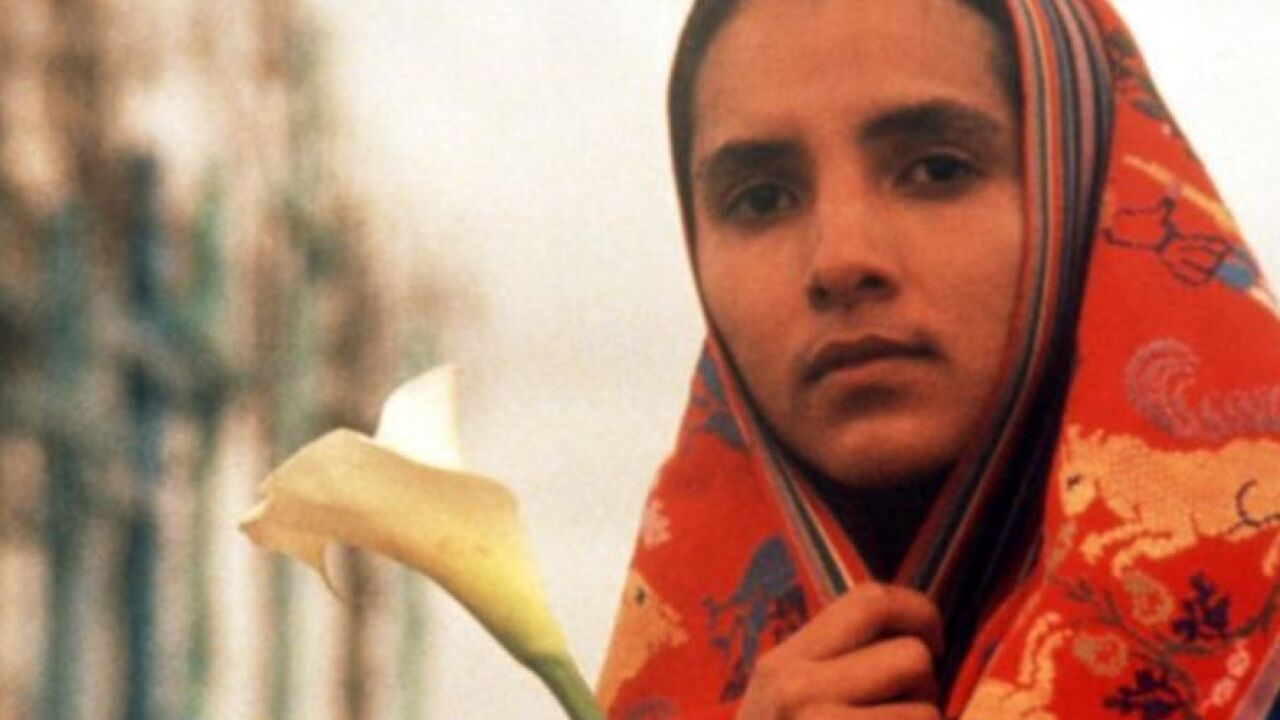 """""""El Norte,"""" the seminal film about a brother and sister who flee violence in Guatemala to seek a new life in the United States, is returning to the big screen for one day this month to commemorate its 35th anniversary."""