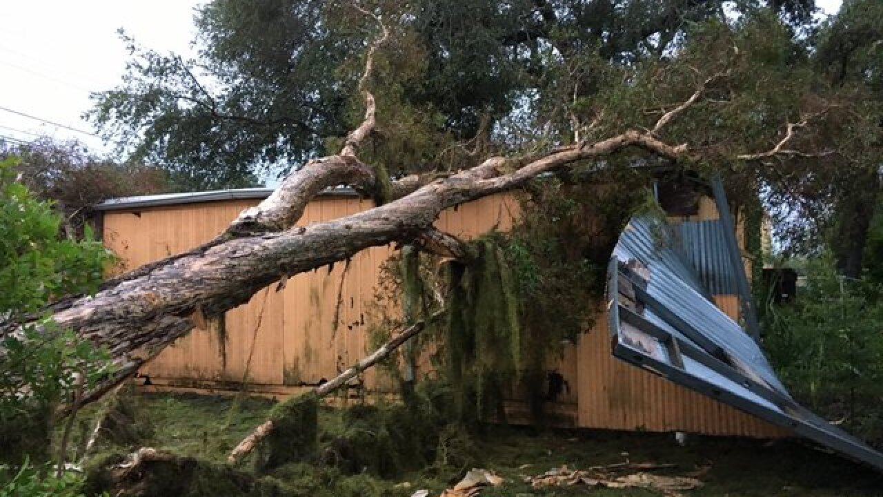 Hurricane Irma lashes Tampa Bay