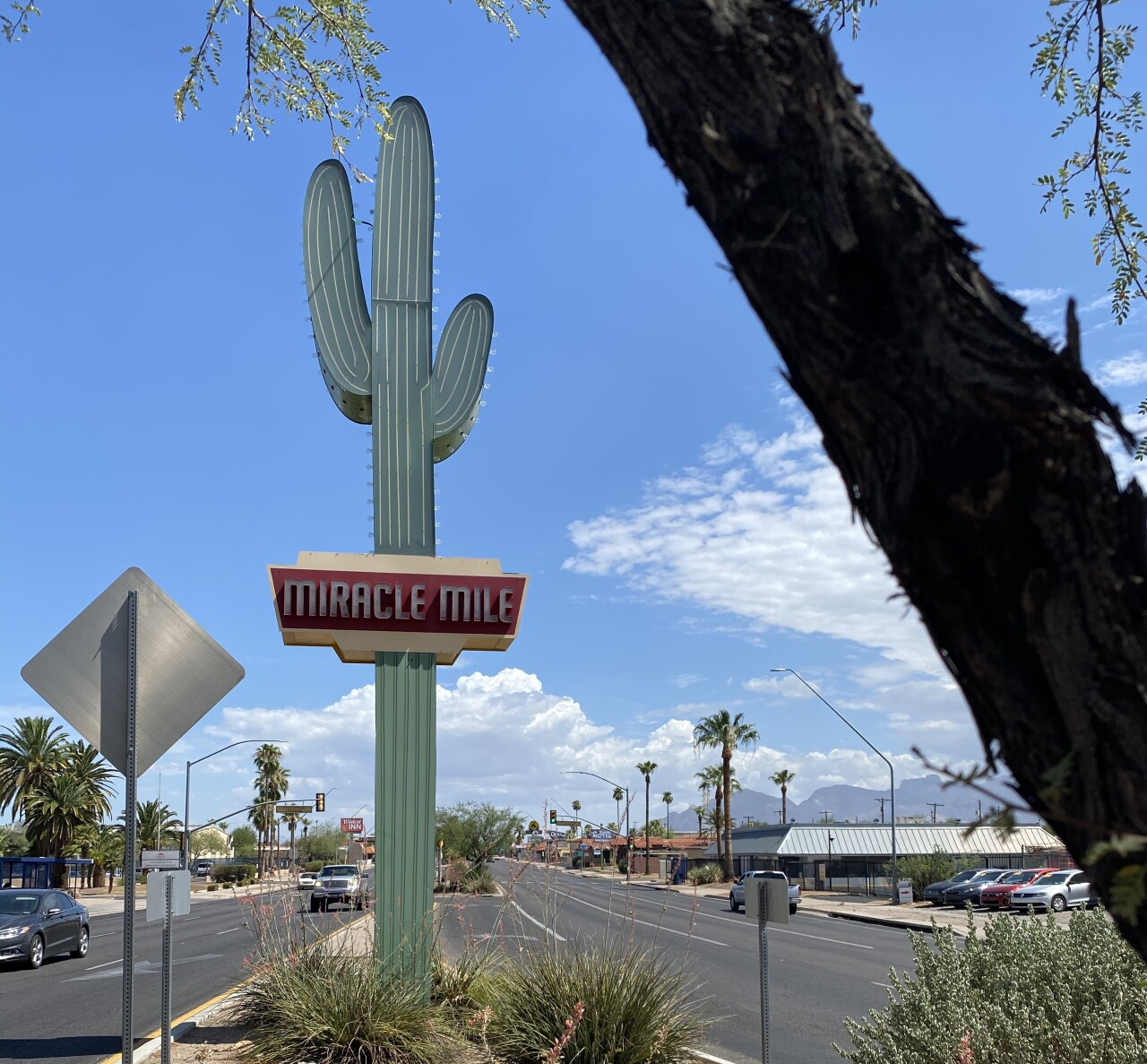 Neon saguaro pays tribute to Miracle Mile history