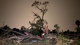 EF-2 tornado damage, Kathleen, Florida Polk County.