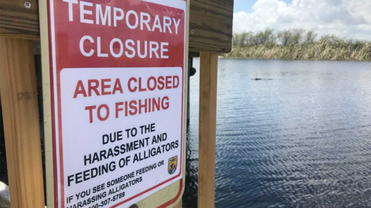 Arthur R. Marshall Loxahatchee National Wildlife Refuge Lee Rd boat ramps closing to bank fishing
