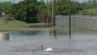 La Volla Creek flooding.png