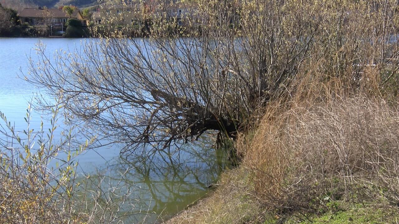 LAKE DREDGE.jpg