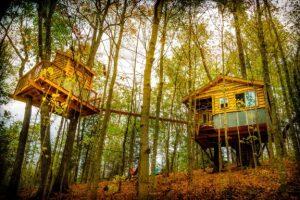 Photo: Earth Joy Tree Adventures
