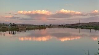 Mirror on the lake.jpg