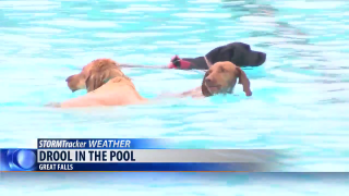 """""""Drool In the Pool"""" coming up soon at Electric City Water Park"""
