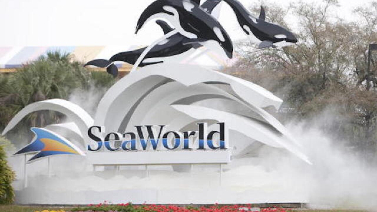 Dolphin snags iPad at SeaWorld Orlando, splashes the haters
