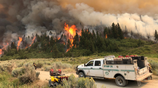 Pine Gulch Fire on Western Slope grows to over 20K acres, no containment