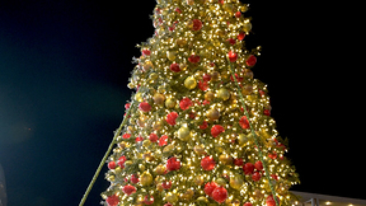 Christmas tree lit at The Park near arena