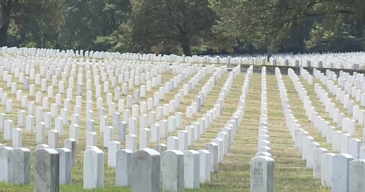 Saluting Branches honors Baltimore veterans