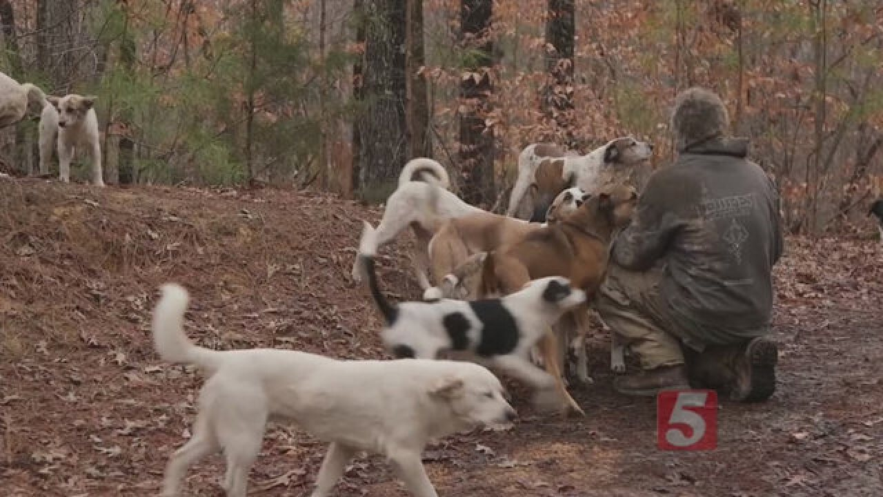 Man Lives 16 Years In the Woods With Dogs