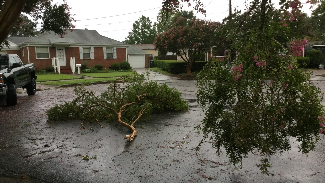Photo gallery: August 4 storm damage and flooding