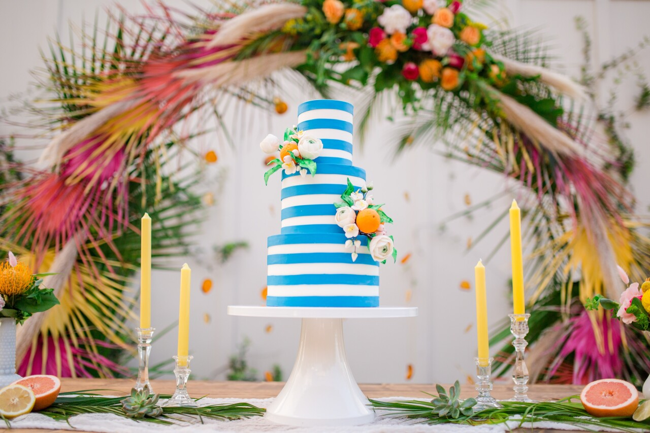 Tampa Bay Cake Company 3.jpg