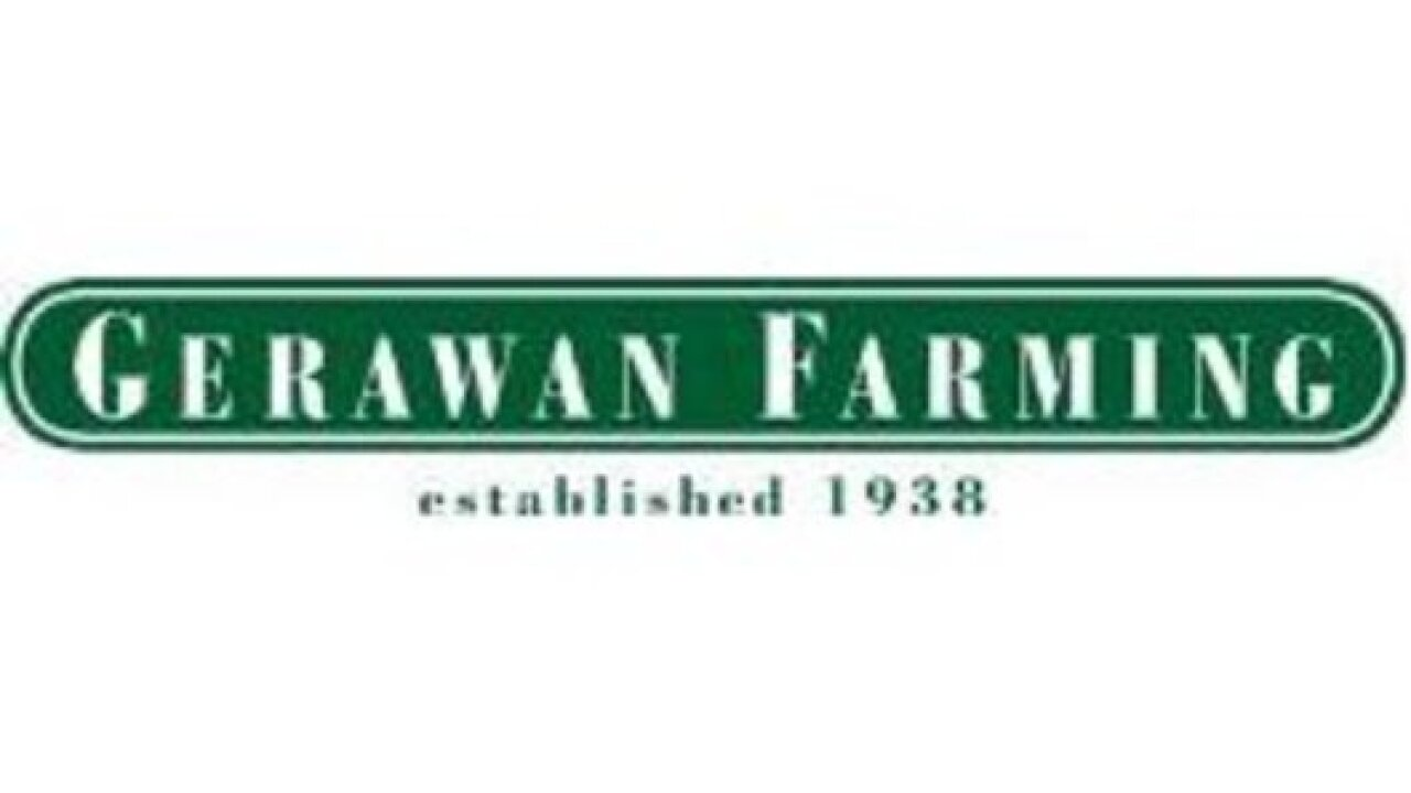 Gerawan Farming ordered to back pay farmers who supported UFW
