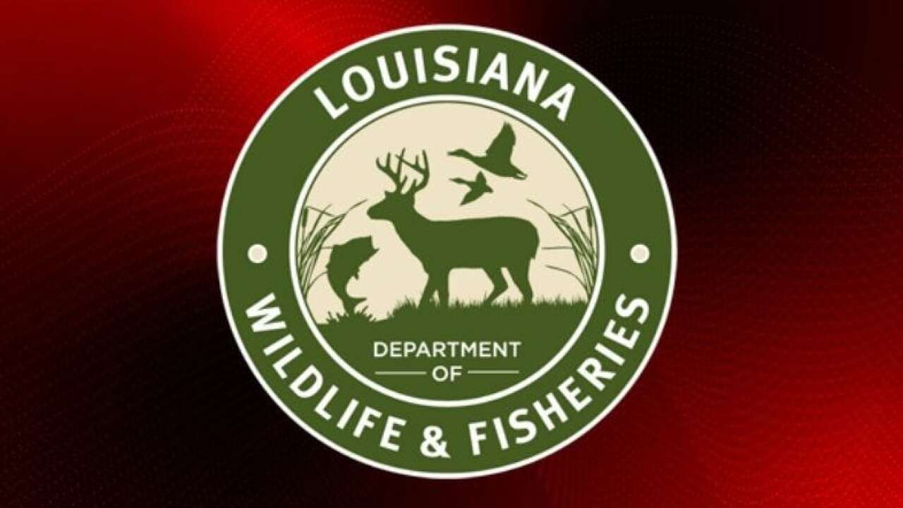 Wildlife and Fisheries offices now consolidated in Lafayette
