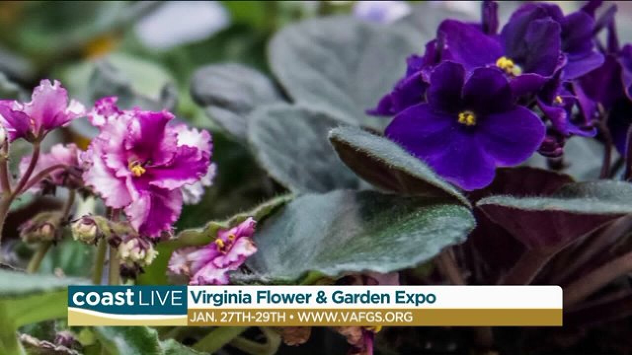We bring the annual Virginia Flower & Garden Expo to the set of CoastLive