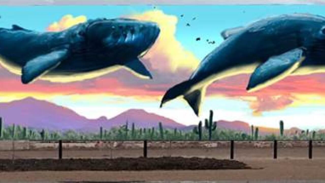 Tucson Mural 6.jpg