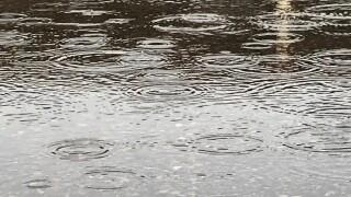 Generic rain puddle