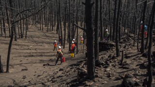 Heil Valley Ranch burn area