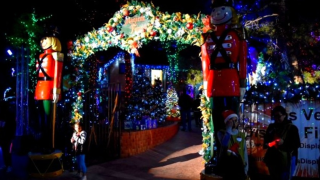Vegas nonprofit has Magical Forest returning for holidays