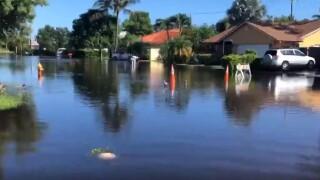 wptv-sea-pines-lantana-flooding.jpg