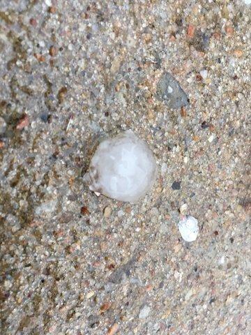 PHOTOS: Storms bring hail to Kansas City metro