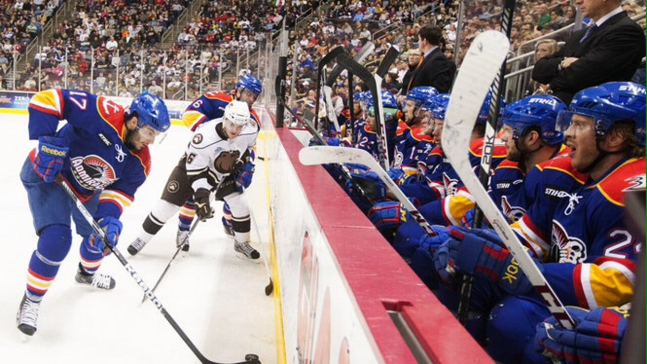 How about some hockey? Get in the Norfolk Admirals action this winter