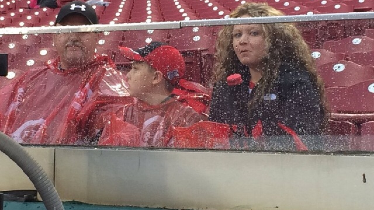 Reds game postponed because of rain