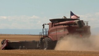 Deadline approaching for Montana farmers, ranchers to sign up for COVID relief