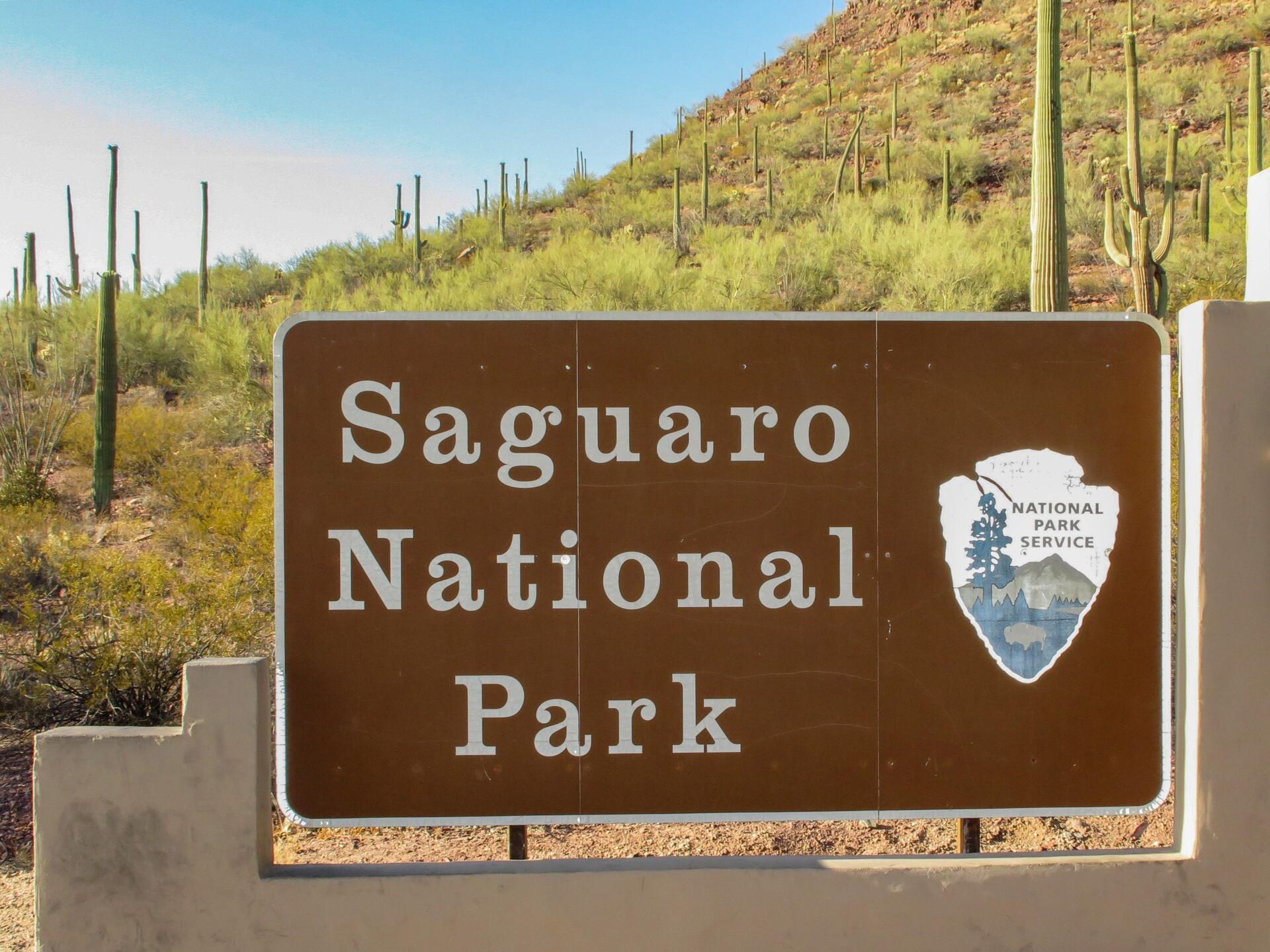 Saguaro_National_Park_(West)_1 WIKICOMMONS.jpg