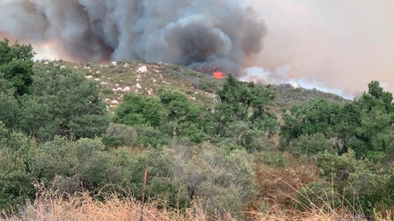 Tenaja Fire