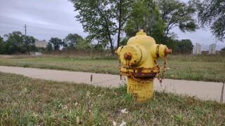CoBC hydrant.jpg