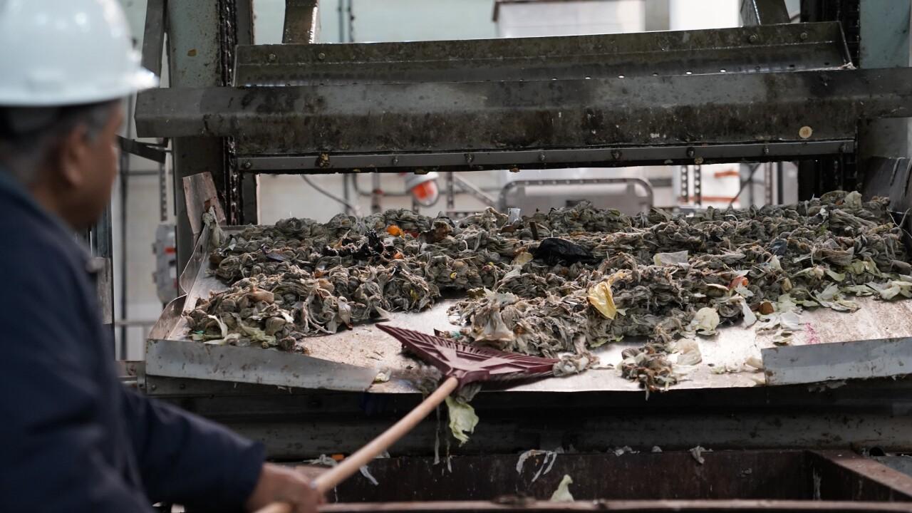 Sanitation workers properly disposing harmful waste