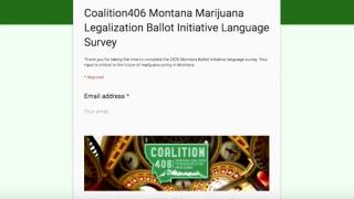 Committee proposing marijuana legalization ballot measure launches survey