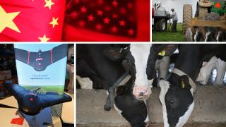 Ag Report; Trade War, Dairy Farmers, Ag Tech, Diversification