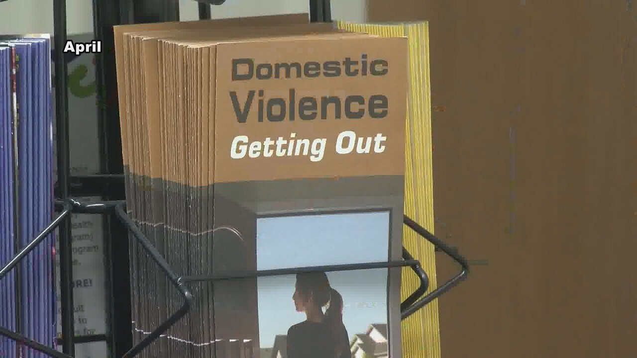 Domestic Violence pamphlet.jpg