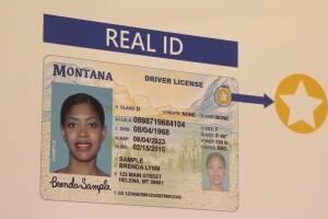 REAL ID CARD.jpg
