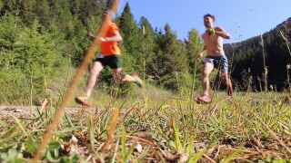Snowbowl 15k Trail Run