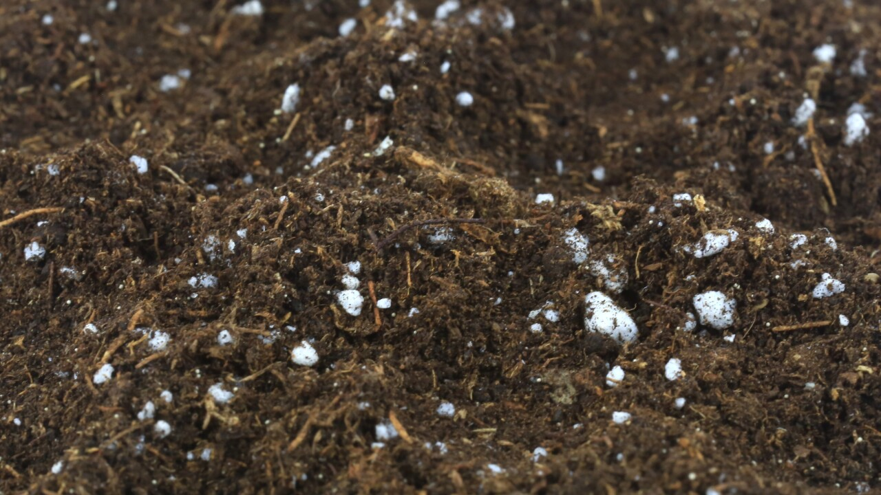 Washington becomes the first state to legalize composting of humans