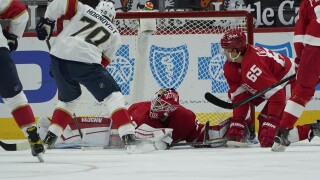 Panthers Red Wings Hockey