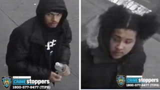 Bronx slashing suspects